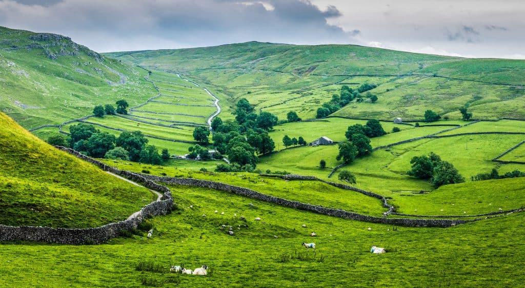 Englische Landschaft mit grünen Wiesen und Steinmauern