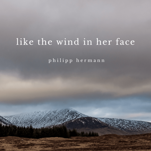 Like the Wind in her Face Artwork